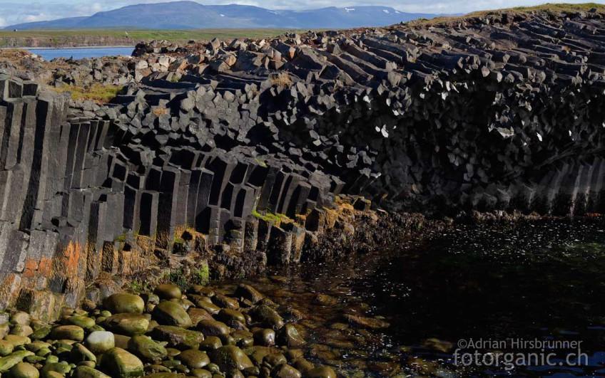 Formschöne Basaltsäulenformationen bei Kálfshamarsvík
