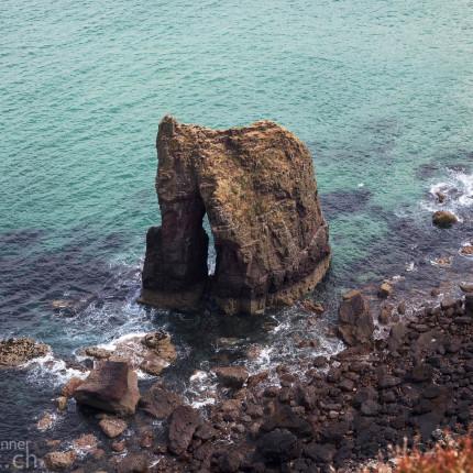 Zahlreiche Möven nisten auf diesem Felsen in Camas Mor.
