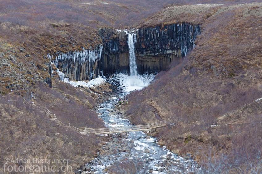 Swartifoss, Basaltsäulen-Wasserfall im Süden Islands.