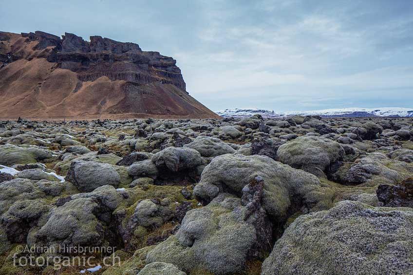 In Island sind ganze Landstriche durch solche Lavafelder geprägt.