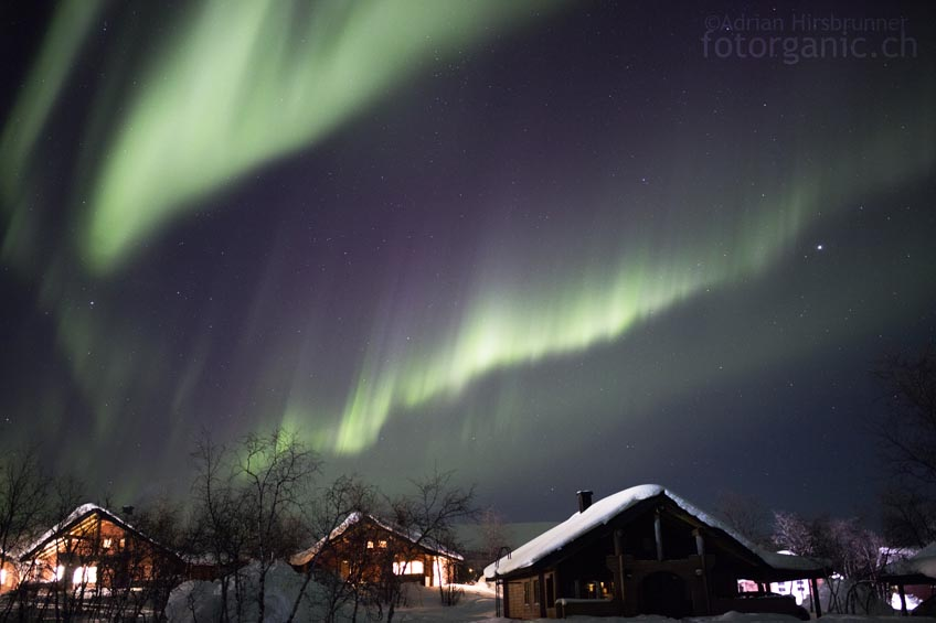 Wehende Polarlicht-Vorhänge am ganzen Himmel! Die Nordlichter bewegen sich immer schneller.