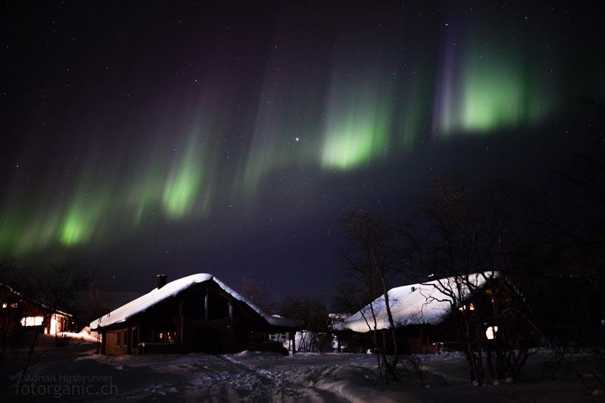 Wehende Nordlichter zieren den Himmel wie Girlanden.