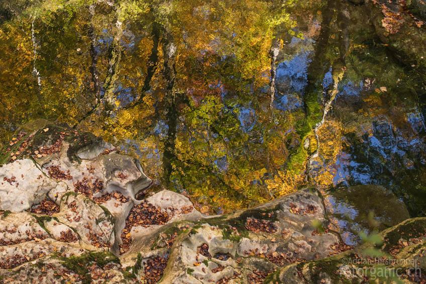 Das Spiegelbild der Bäume in einem Becken in der Areuse-Schlucht wird zum pointillistischen Gemälde.