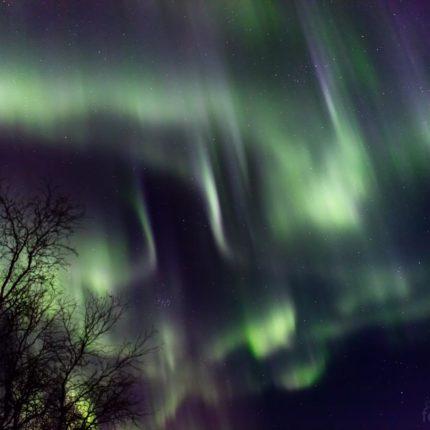 Alle möglichen Formen der Aurora borealis zeigen sich jetzt.