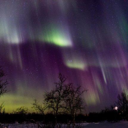 In rasantem Tempo verändern sich die Farben und Formen des Nordlichts