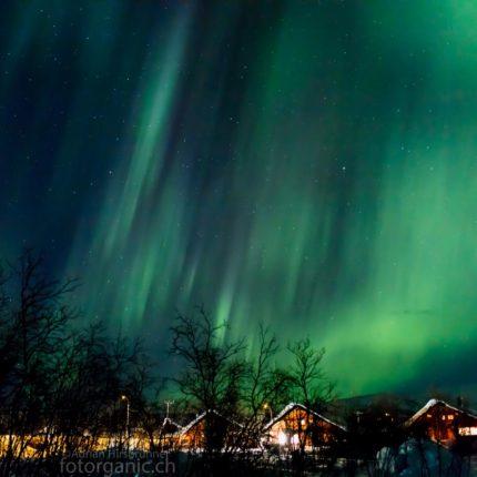 Das grüne Polarlicht wirkt wie ein grüner Regenschauer.
