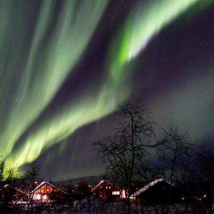 Während die grünen Farben des Polarlichts von angeregtem atomarem oder molekularem Sauerstoff herrühren, sind bei besonders intensiven Lichtern manchmal auch hell leuchtende pink – oder -lilafarbene Spitzen zu beobachten. Diese entstehen durch Anregung von atomarem Stickstoff.