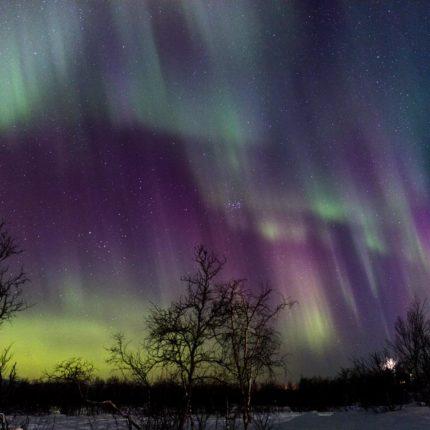 Der Himmel ist jetzt überall voller Nordlichter. Zunehmend sind auch rote Farben wahrnehmbar.
