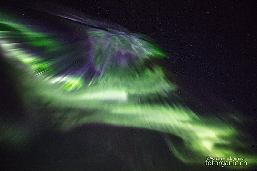 Manchmal jagen die Polarlichter auf den Lofoten wie tanzende Dervische über uns hinweg.