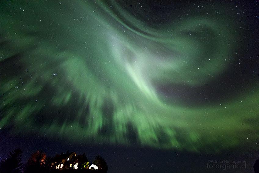 Nordlichter regen die Phantasien der staunenden Beobachter an: Dieses Polarlicht-Gebilde erinnert mich an eine Riesenkrake...
