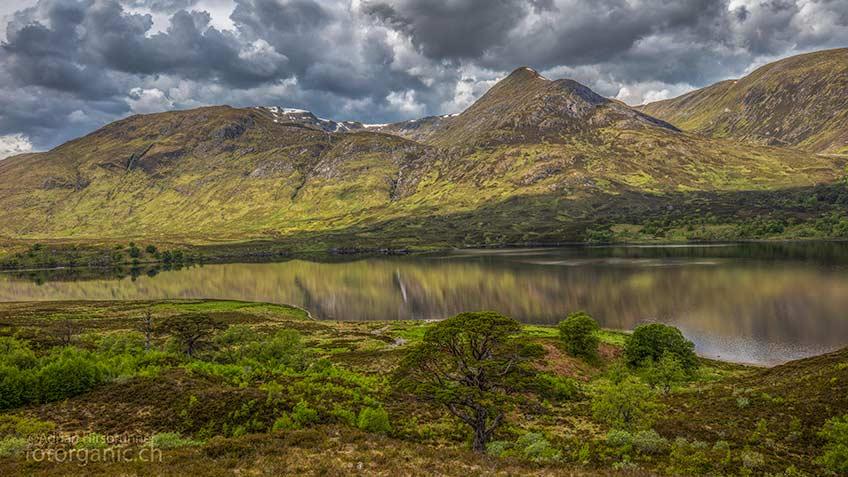 Glen Affric ist ein abgeschiedenes Tal in den Schottischen Highlands. Rund um seinen See Loch Affric, erlebst Du das urtümliche Schottland.