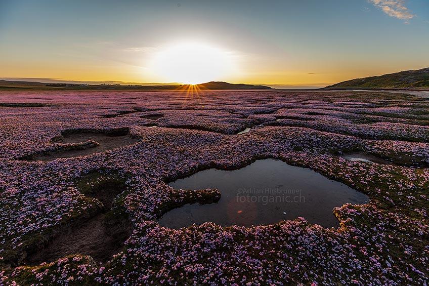 Die Landschaft Schottlands ist von überwältigender Schönheit. Richtig geniessen kannst Du sie besonders dann, wenn Du dich auf ihren Rhythmus einlässt. Jahreszeit, Tageszeit, Gezeiten und wechselhaftes Wetter - verleihen ihr immer wieder ein neues Gesicht.